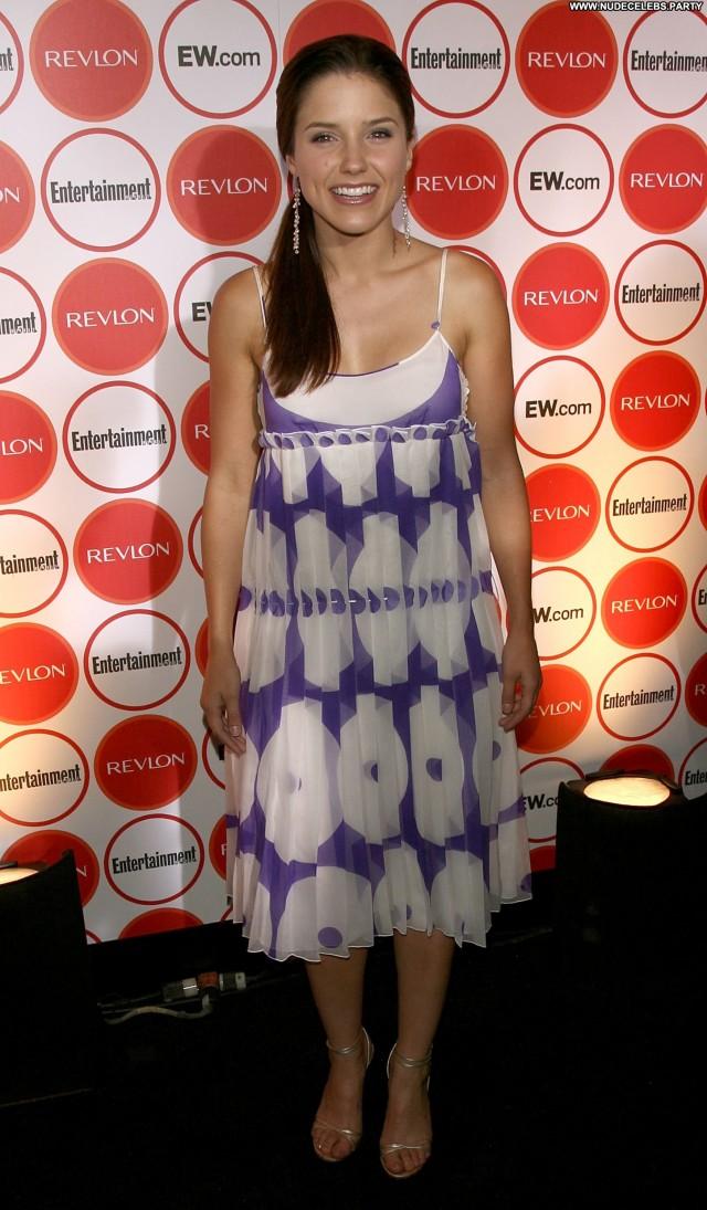 Sophia Bush True Blood Beautiful Posing Hot Celebrity Sensual Cute